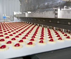 IL Food Manufacturing Insurance