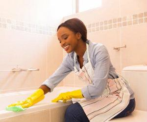 IA House Cleaning and Maid Insurance